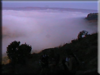 Early morning cloud at Suikerboschfontein